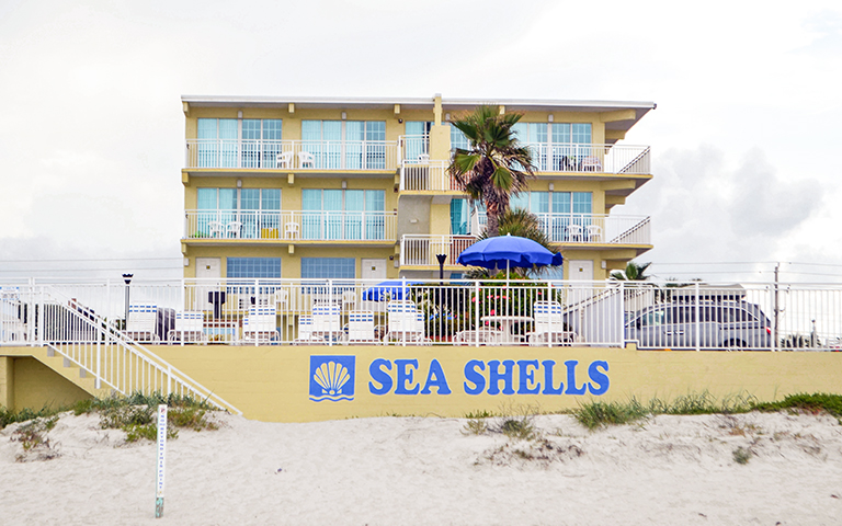 Sea Shells, Daytona Beach, Florida